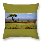 Texas Landscape 16095 Throw Pillow