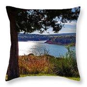 Texas Panhandle Scenic Throw Pillow