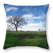 Texas Sky Throw Pillow
