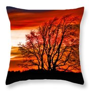 Texas Sunset Throw Pillow