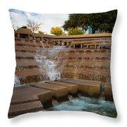 Texas Water Gardens Throw Pillow