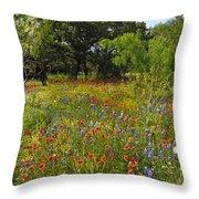 Texas Wildflower Medley Throw Pillow