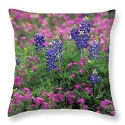 Texas Wildflowers 3 - Fs000930 Throw Pillow