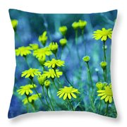 Texas Wildflowers V4 Throw Pillow