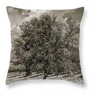 Texas Winery Tree And Vineyard Throw Pillow