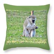 Texting Monkey Throw Pillow