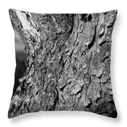 Texture In The Trees Throw Pillow