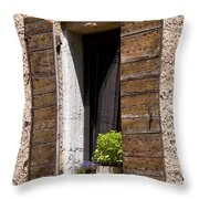 Textured Shutters Throw Pillow