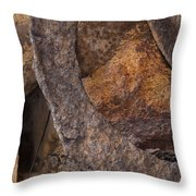 Textures 2 Throw Pillow by Fran Riley