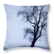 The Patriarch In Color Throw Pillow
