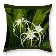 Thailand Beauty Throw Pillow