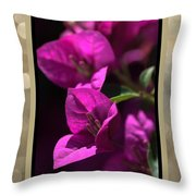 Thank You - Bougainvillea Flowers Throw Pillow