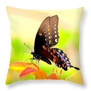 Thanks For Everything Throw Pillow