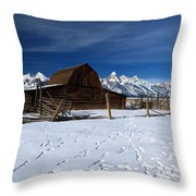 That Famous Barn Throw Pillow