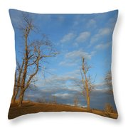 That Glorious Mountain Sky Throw Pillow