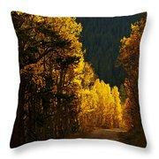 The Golden Road Throw Pillow
