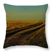 That Long Long Road Throw Pillow