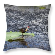 That Sinking Feeling Throw Pillow