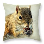 That's Now Some Good Food Throw Pillow