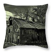 The Adirondack Mountain Region Barn Throw Pillow