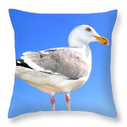 The Admiral 2  Throw Pillow