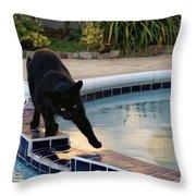 The Adventurous Feline Throw Pillow