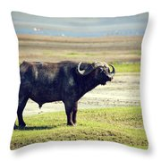 The African Buffalo. Ngorongoro In Tanzania. Throw Pillow
