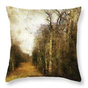 The Allee At Dawn Throw Pillow