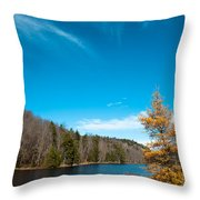 The Alpine Larch Tree On Bald Mountain Pond Throw Pillow