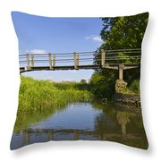The Ambling River Throw Pillow