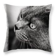 The Ambush Throw Pillow