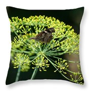 The American Snout Butterfly Throw Pillow