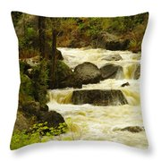 The Amsden River Wyoming Throw Pillow
