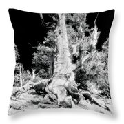 The Ancients - 1010 Throw Pillow