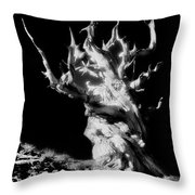 The Ancients - 1011 Throw Pillow
