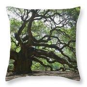 The Angel Oak Throw Pillow