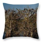 The Anhinga Trees Throw Pillow