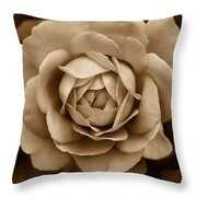 The Antique Rose Flower Throw Pillow