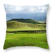 The Aqueduct Panoramic Throw Pillow