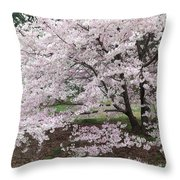 The Arboretum Cherry Blossoms Throw Pillow