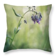 The Arrival Of Spring Throw Pillow