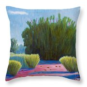 The Arroyo Throw Pillow
