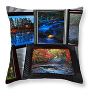 The Art Collector Throw Pillow by Frozen in Time Fine Art Photography