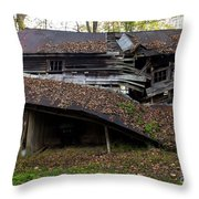 The Art Of Decay Throw Pillow