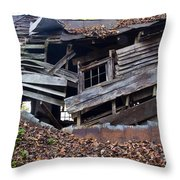 The Art Of Decay II Throw Pillow