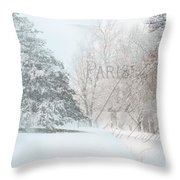 The Art Of Nature Throw Pillow by Betty LaRue