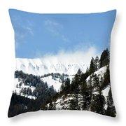 The Artwork Of Winter Throw Pillow