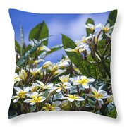 The Ascetic Dimension Throw Pillow
