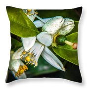 The Baby Throw Pillow
