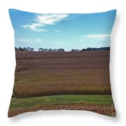 The Back Lane Throw Pillow